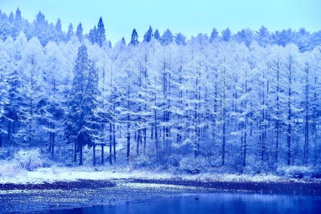 雪降る北国
